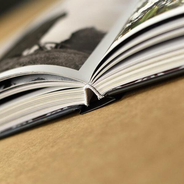 Dobra i okolice, książka w oprawie miękkiej